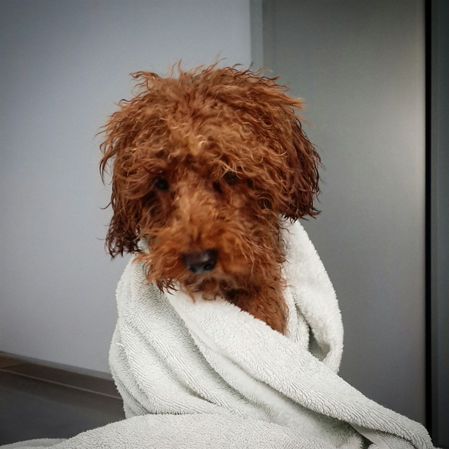 Our son after shower
